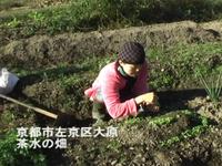 Vol.077 茶水(ちゃすい)